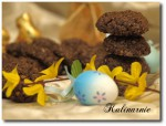 Ciasteczka razowe z czekoladą